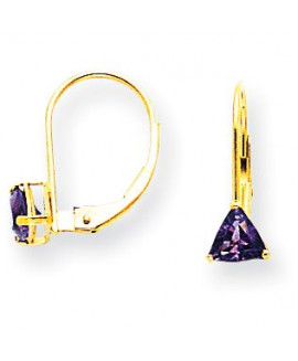 14k 5mm Trillion Amethyst Leverback Earrings