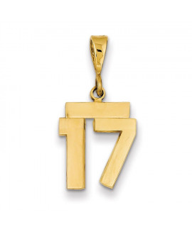 14k Small Polished Number 17 Charm