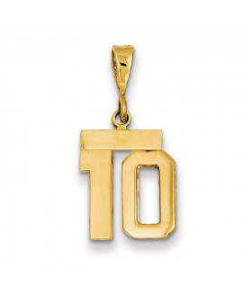 14k Small Polished Number 10 Charm