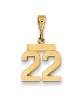 14k Small Polished Number 22 Charm