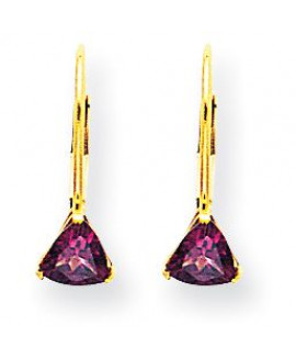14k 5mm Rhodolite Garnet Leverback Earrings