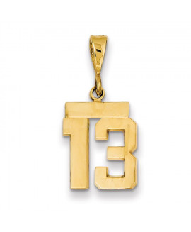 14k Small Polished Number 13 Charm