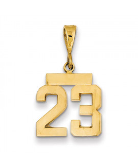 14k Small Polished Number 23 Charm