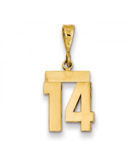 14k Small Polished Number 14 Charm