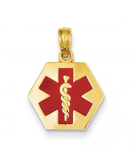 14k Enameled Medical Disk Pendant